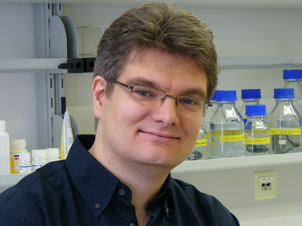 Portrait: Neumann, Heinz, Prof. Dr.